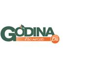godina-logo